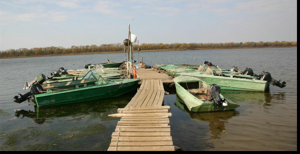 организация рыбалки в саратове